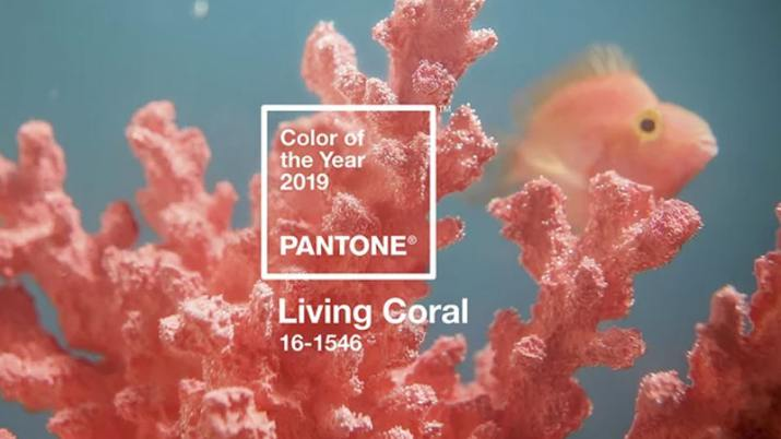 Color Pantone del Año 2019 Living Coral