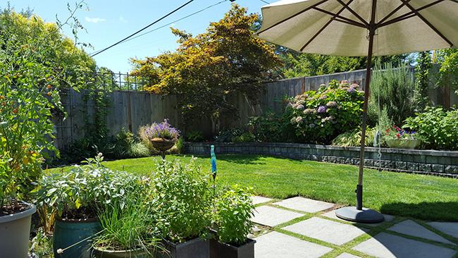 Un jardín grande, bonito y moderno