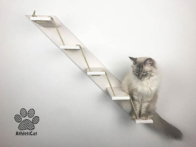 Estante de pared escalera para gatos
