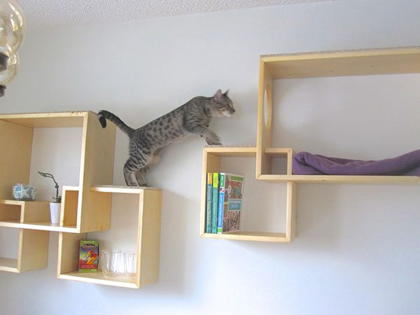 Estantes de pared para gatos