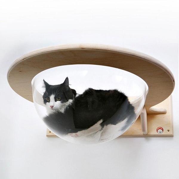 Rascadores, estantes, camas de pared para gatos y gatificar la casa
