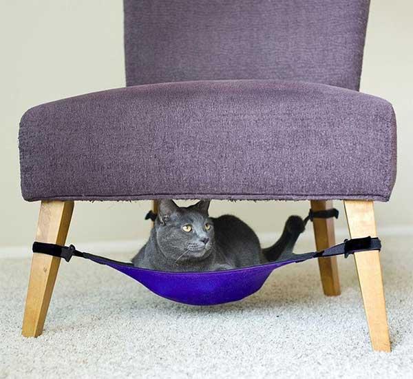 hamaca-silla-gato