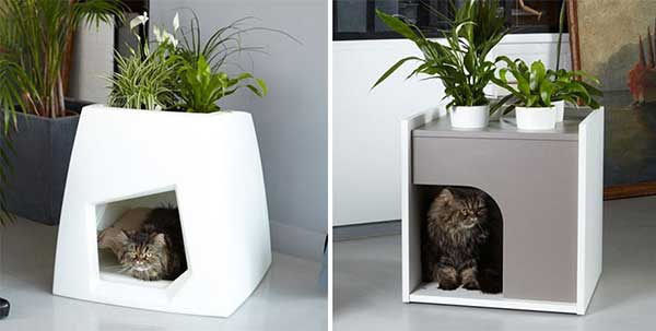 maceta-gato