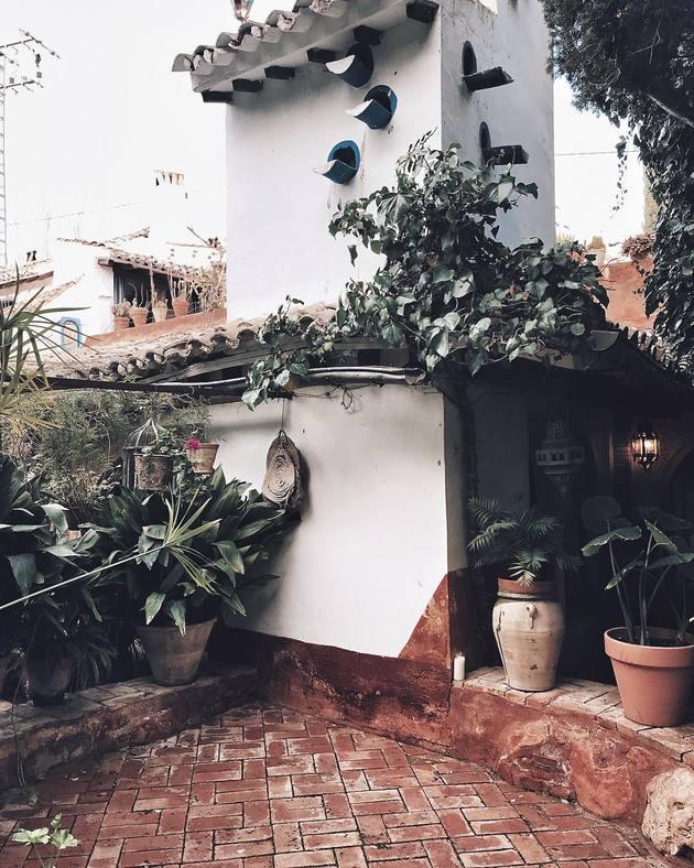 Jardín con vegetación